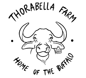 Thorabella Buffalo Farm